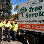 Simpsons Tree Service